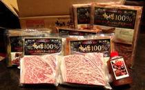 【2名様分】大田原牛 特上ロースステーキ2枚とシチュー・カレー・生ハンバーグ各2パックの詰め合わせ