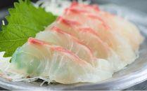 【刺身用】佐伯産鯛 低温熟成魚切り身 約300g+あら付きセット