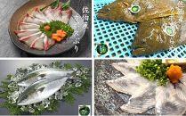 【刺身セット】佐伯産カボスぶり&カボスひらめ 低温熟成魚切り身