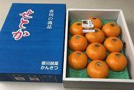 【ポイント交換】三豊市産せとか3kg