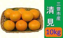 """【ポイント交換】三豊市産""""清見""""10kg"""
