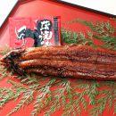 ■大サイズ 国産うなぎ蒲焼5本セット