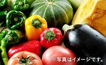 「ベジーズ館」の夏野菜詰め合わせセット【数量限定】