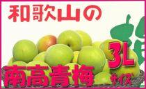 <令和元年発送>【梅干づくり用】紀州南高梅(3Lサイズ/4kg)