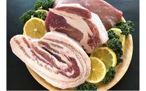 【ポイント交換専用】幻の和製イベリコ豚 「ととりこ黒豚」ブロック肉(1.2kg)