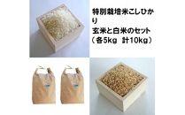 【ポイント交換専用】減農薬・減化学肥料 特別栽培米こしひかり「白米」と「玄米」セット(各5kg 計10kg)