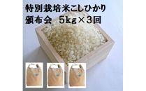 【ポイント交換専用】減農薬・減化学肥料 特別栽培米こしひかり頒布会(5㎏×3回)