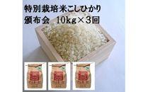 【ポイント交換専用】減農薬・減化学肥料 特別栽培米こしひかり頒布会(10㎏×3回)