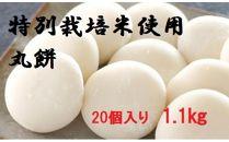 大山のお米を使った丸餅(20個入り 1.1㎏)