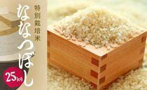 【2019年11月下旬発送】特別栽培米 ななつぼし25kg(アポイ米)