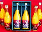 飲むみかん♪無添加「糖度12度以上マルチ栽培みかんストレートジュース」720ml×6本