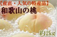 ■和歌山の桃 約2kg・秀選品【産直・人気の特産品】