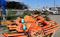 【石川県産】産加能かに(ずわい蟹)生重量900g×3匹