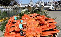 【石川県産】産加能かに(ずわい蟹)生重量800g×3匹