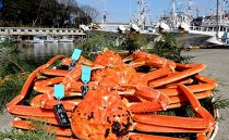 【石川県産】産加能かに(ずわい蟹)生重量700g×3匹