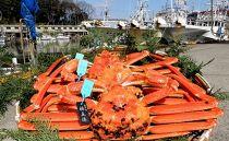 【石川県産】産加能かに(ずわい蟹)生重量600g×3匹