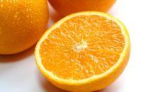 ■[2020年2月~発送]和歌山産清見オレンジ10kgサイズおまかせ・秀品