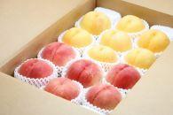 AP38数量限定!どちらも食べたい「白桃と黄桃の食べ比べセット 5kg」