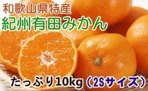 ■【厳選・産直】紀州有田みかんたっぷり10kg(2Sサイズ)