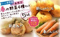 【春の新野菜セット】新じゃがいも・新玉ねぎ・春人参の基本野菜に自慢の旬野菜を1品セットでお届け!約5kg