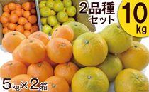 季節の柑橘詰合せセット みかん 2種類(5キロ×2箱)10キロ