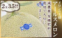 ★2019年7月発送★メロンの王様アールスメロン2玉(3.5kg以上)