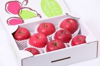 AP73甘味と酸味の絶妙なバランス!「山形県産サンふじりんご3kg」