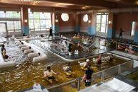 【富山市にお住まいのご家族へ】温泉プールで行う健康効果抜群のQOLツアー(体験・1か月コース)