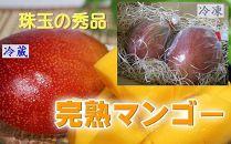 大崎町の完熟マンゴー年間(全10回)お届けコース(生&冷凍)
