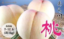 【高級】和歌山ブランド あら川の桃7玉~12玉入り(約3Kg) 【紀ノ川グルメ市場】