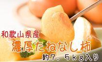 【紀の川特産品】 濃厚たねなし柿 約7.5kg