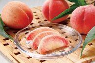 ■【2019年7月以降出荷】≪とろける果実≫和歌山県産白鳳約4kg 青秀≪ご家庭用≫