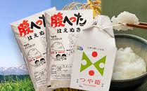 平成30年産米はえぬき10kg、つや姫5kgYA<山形農芸>