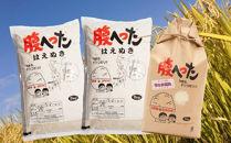 平成30年産米はえぬき10kg、ひとめぼれ5kgYA<山形農芸>