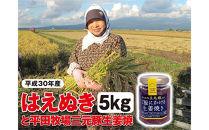 【平成30年産米】庄内産米はえぬき5kgと平田牧場三元豚「ご飯にかける生姜焼き」1個SI<庄内い~ものや>