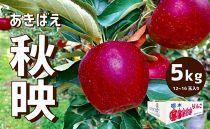 【2019年9月下旬よりお届け】樹上完熟・葉取らずりんご「秋映」5キロ