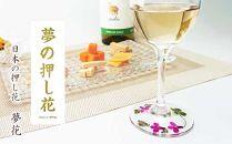 花の町東神楽町から<押し花ワイングラスセット赤A>(夢花)
