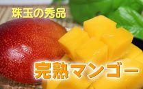 南国の恵み 完熟マンゴー 秀品約1kg