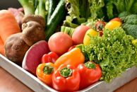 【有機JAS認定オーガニック】シェフの目線「大洲の旬野菜詰合せ」年間パスポート