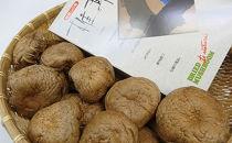乾椎茸(香菇)200g