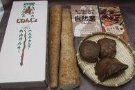 自然薯・宇宙芋(エアーポテト)セット