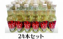 ノンジャエール250ml×24本/高知四万十町産生姜100%使用ジンジャエール炭酸飲料はちみつ使用/あぐり窪川