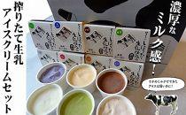 搾りたて生乳アイスクリーム8個セット(塩みるく・いちご・マルセイユメロン・生姜・緑茶・ブルーベリー・フレッシュみるく・チョコレート)高知四万十/あぐり窪川