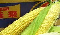 ☆6月上旬発送予約受付☆[香川産]もぎたてトウモロコシ5kg
