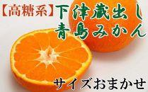 【高糖系】下津蔵出し青島みかん約5kg(S~2Lサイズおまかせ)