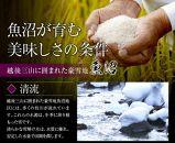 【JAみなみ魚沼頒布会】しおざわコシヒカリ「天地米」(10kg×全6回)