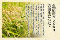 【JAみなみ魚沼頒布会】しおざわコシヒカリ「天地米」(20kg×全6回)