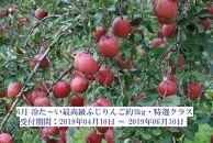 6月冷た~い最高級ふじりんご約3kg・特選クラス
