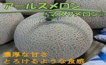【斎藤農園/4玉】アールスメロン(マスクメロン)4玉/6kg程度