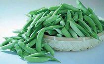《わけあり》紀州うすいえんどう豆約4kg